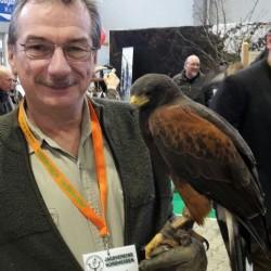 Beizjagd mit Greifvögeln stellt hier im Bild Volker Dippel vom Vorstand der Hessenjäger Kassel zur Schau.